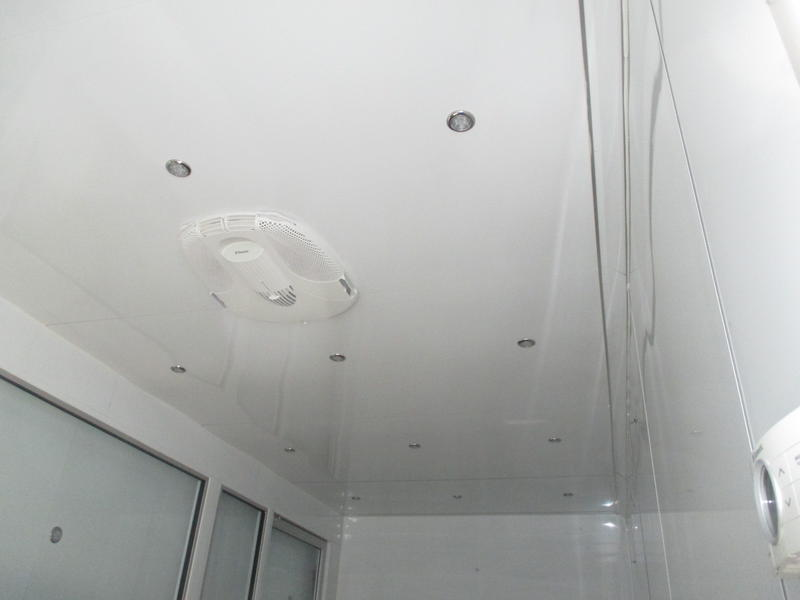used Bizbox Model X ceiling